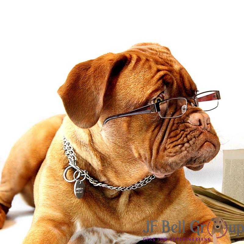 CPA for Veterinarians